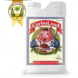 CarboLoad Liquid 1 litro