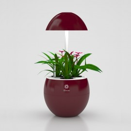 Led urbangreen igrow 3