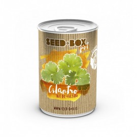 Pot cilantro (seed box)